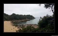 L'île-d'Aix. Charente Maritime- France