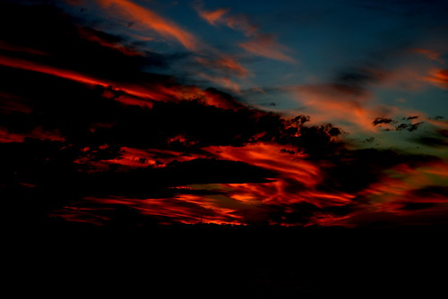 Redhead Sunset