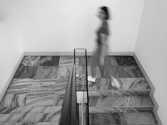 You burn 0.17 calories per stair climbed and 0.05 calories per stair descended.
