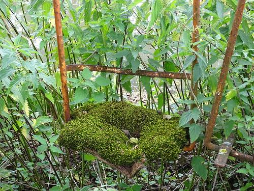 swing set, green sponce bob