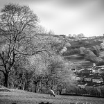 Garw Valley Views January 2019 in black & white