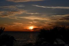 Stunning Sunset Tampa Bay Florida - IMRAN™ (SOOC)