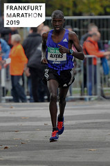 Sportler joggt den Frankfurt Marathon 2019