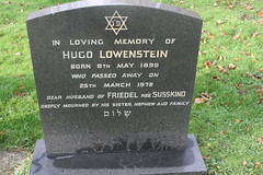 Hugo Lowenstein
