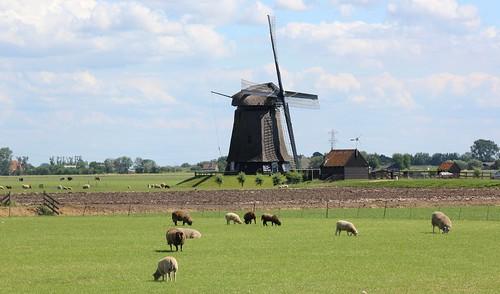 Nederland - Noord-Holland - Stompetoren - Poldermolen M te Zuidschermer