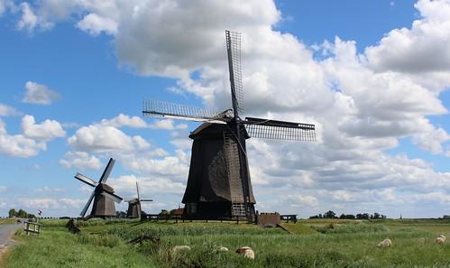 Nederland - Noord-Holland - Schermerhorn - Ondermolen C