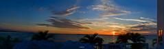 3 Bird Formation Flying Over Stunning Sunset Tampa Bay Florida - IMRAN™ (SOOC Panorama)