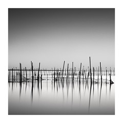 Image by vulture labs (38181284@N06) and image name Albufera photo  about NEXT WORKSHOP IN VALENCIA www.vulturelabs.photography/product-page/valencia-january...