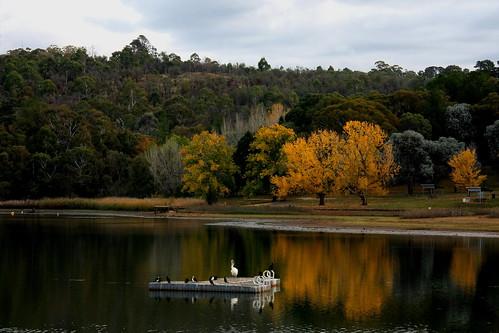 LAKE CANOBOLAS - ORANGE NSW