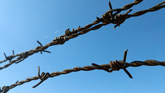 Rusty barb wire and blue sky in the background