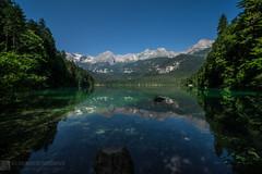 Dalla malga Arza al bivacco Pinamonti (Parco Naturale Dolomiti di Brenta - Trentino)