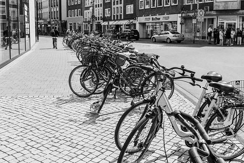 Münster, city of bikes