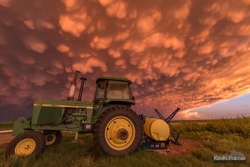 Farmer's Delight