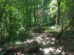 Giles Run Trail