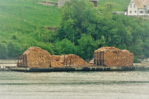 Logging on the Fjords of Norway