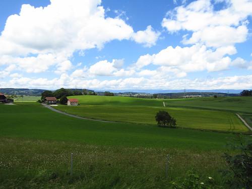SwissLandscape