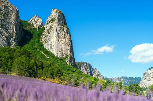 Landscape - Saou