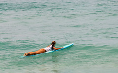 Sexy girl surfing on a wave    XOKA5737bs