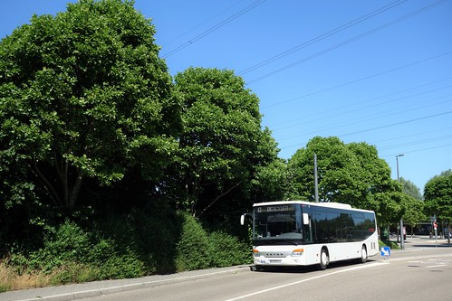 Setra S 415 LE Business n°917  -  Strasbourg, CTS
