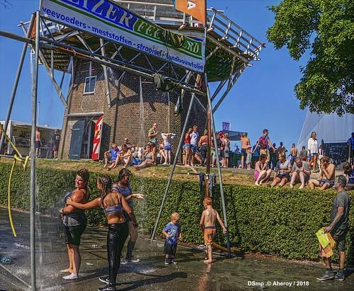 Mudrun,Garnwerd,Groningen  ,the Netherlands,Europe
