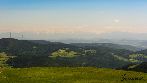 Alp panorama from the Black Forest