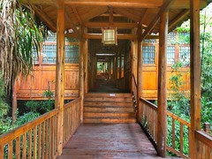 Sauna pool, Mangshan national park 莽山国家森林公园、湖南
