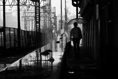 I also like a rainy day