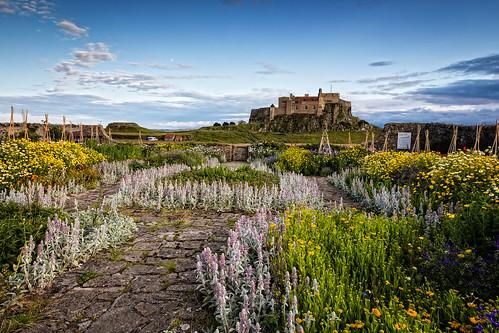 Gertrude Jekyll's Garden