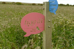 Bird Signs by Electric Angel, RSPB Bempton Cliffs Seabird Centre