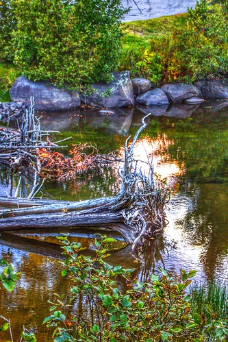 Lake Placid New York  ~  Dramatic Refection on the  Water