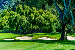 2019 07 Quail Lodge Golf