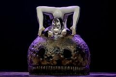 OVO - Cirque du Soleil | 190709-7368-jikatu
