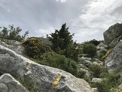 IMG_5416 - Photo of Saint-Zacharie
