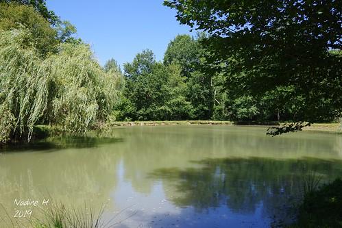 Petit coin sympa en Dordogne