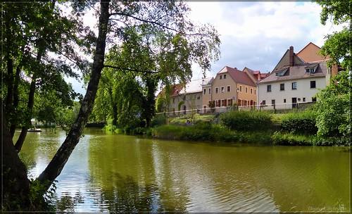 Am Gondelteich in Bischofswerda