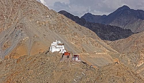 Himalayan Namagyal Tsemo Monastery India DSC_5279