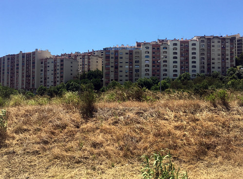 Apartment Living Outside of Lisbon