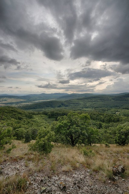 Nyerges mountain, Hungary