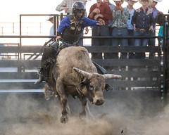 Johnson County Pro Bull Riding 2019