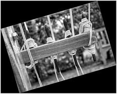 belaying pin rail [NAUT.]