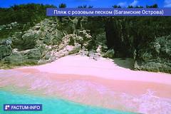 Пляж с розовым песком (Багамские Острова)