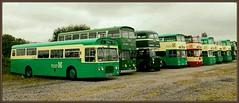Mersey Buses