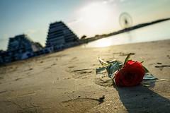 Summer Love End