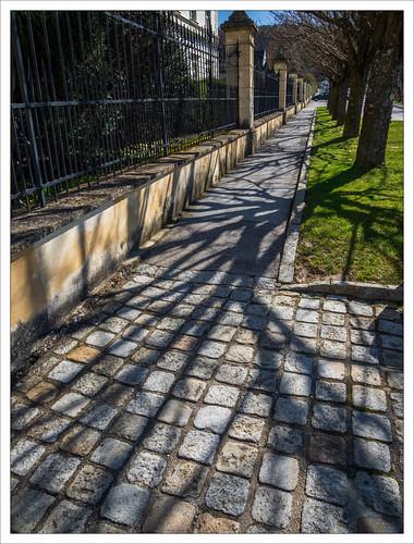 The Shadows of Lockenhaus