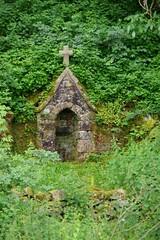 The Miraculous Fountain