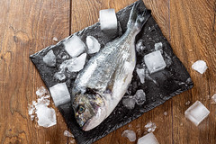 Fresh Dorado fish with ice cubes on wooden table