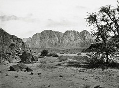 The Written Valley, Sinai ( 1857 ) - Francis Firth
