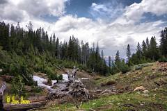 Copper Basin Idaho