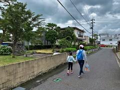 Japan street 2019