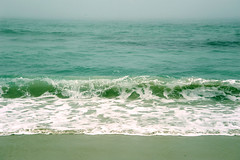 A frothy wave, turquoise, green, on the Pacific Grove, near Asilomar, Pacific Coast, California, USA